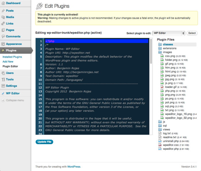 WP Editor WordPress